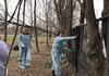 20 апреля на общегородском весеннем субботнике сотрудники СПб ГБУЗ «Елизаветинская больница» в количестве 511 человек смогли покрасить забор, расположенный по всему периметру территории за 2 часа